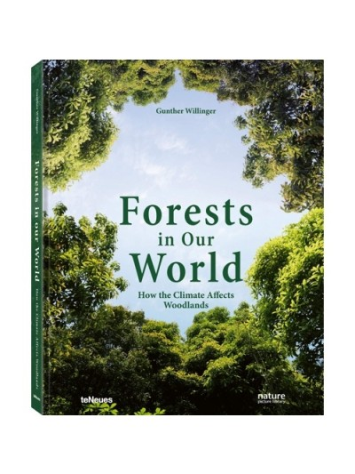 Forest in Our World